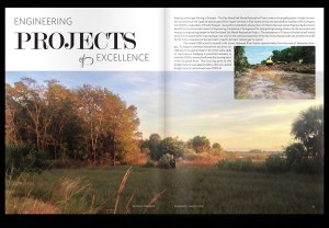 Elba Island Restoration Project Featured in Georgia Engineer Magazine